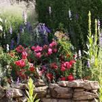 Garten-Impressionen_003